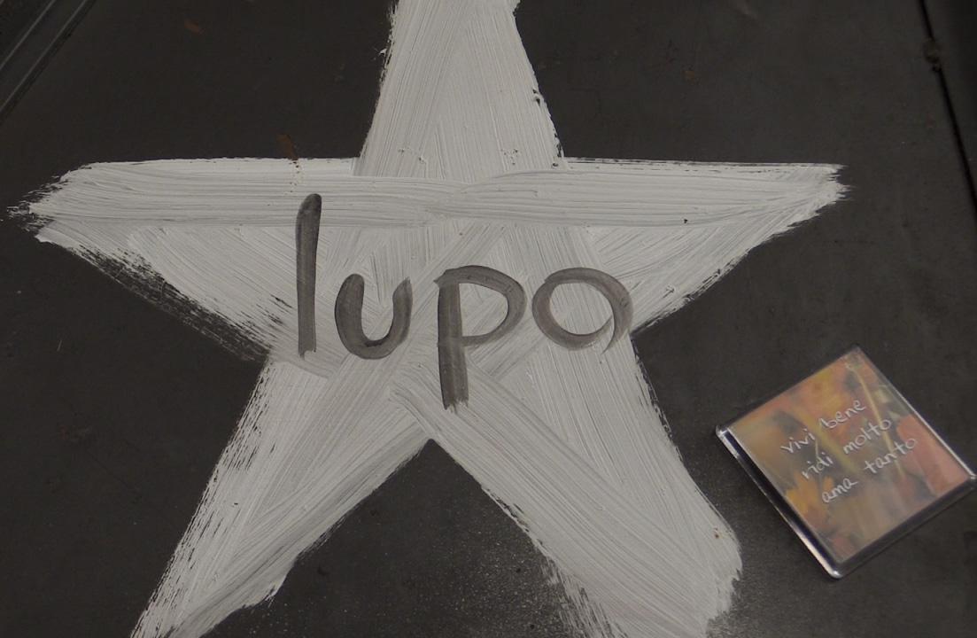 Palestra Lupo